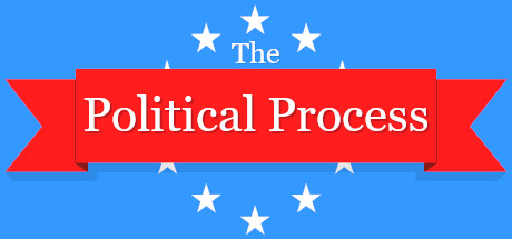 The Political Process Cover Image
