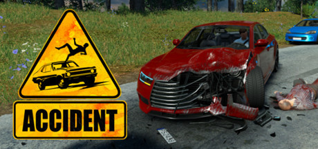 Accident: The Pilot Cover Image