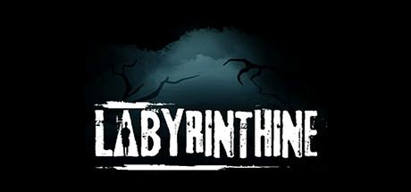 Labyrinthine Cover Image