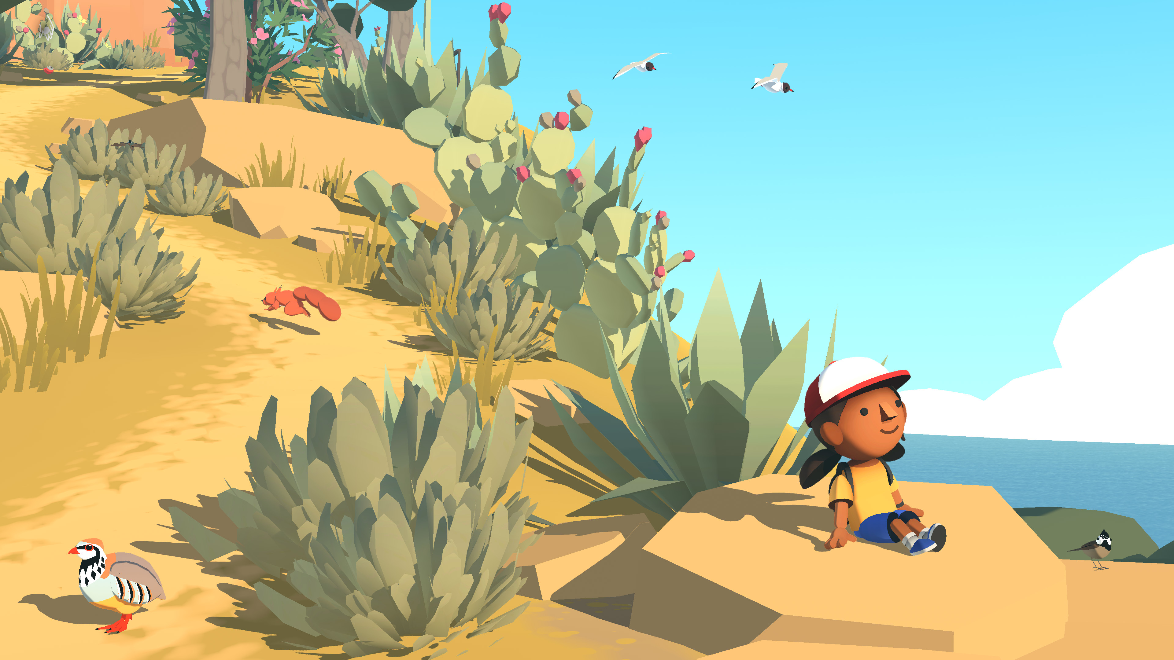 An Image from Alba: A Wildlife Adventure