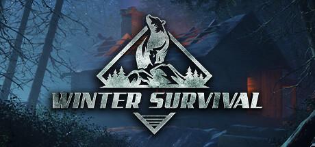 Winter Survival Simulator Cover Image