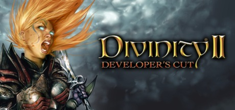 Divinity II: Developer's Cut Cover Image