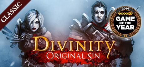 Divinity: Original Sin (Classic) Cover Image
