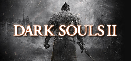 DARK SOULS™ II Cover Image