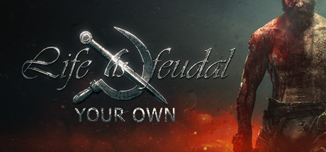 Life is Feudal: Your Own Cover Image