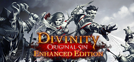 Divinity: Original Sin - Enhanced Edition Cover Image