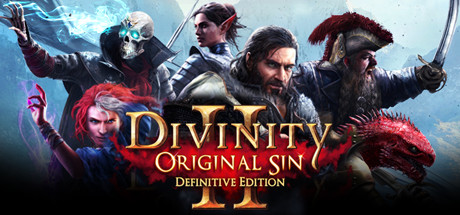 Divinity: Original Sin 2 - Definitive Edition Cover Image