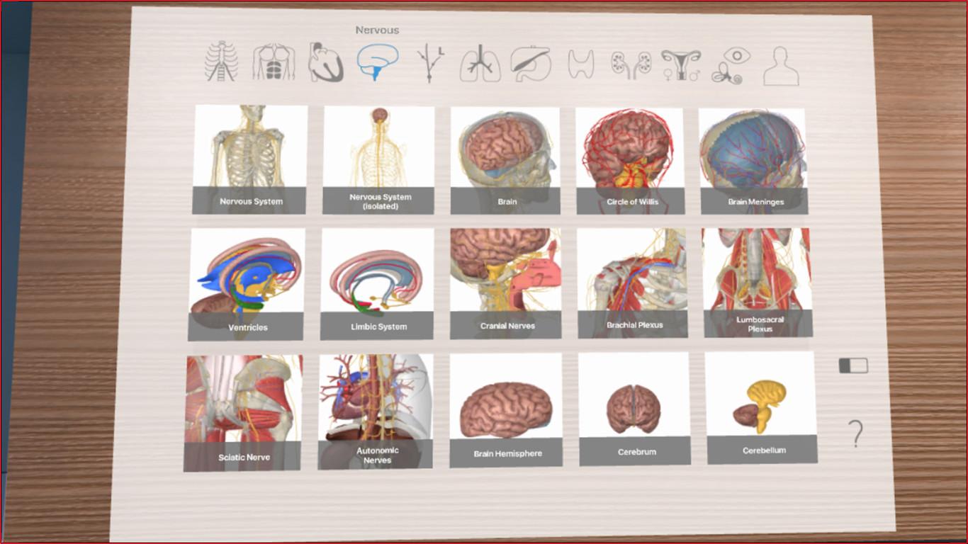 Oculus Quest 游戏《3D Organon VR Anatomy 2021》3D Organon VR 人体解剖学插图(3)