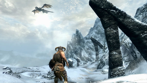 The Elder Scrolls V: Skyrim CD Key 2