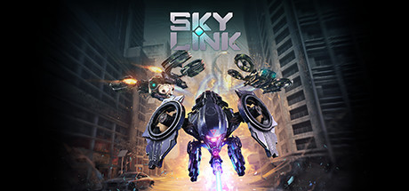 Sky Link Cover Image