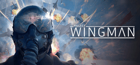Project Wingman Capa