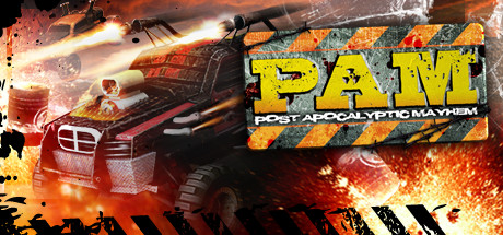 Post Apocalyptic Mayhem Cover Image