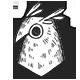 Owl Regular