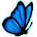 :LIS_butterfly: