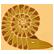 :ABZU_Ammonite: