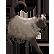 :d3_cat:
