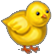 :springchicken: