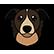 :cyberdog: