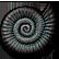 :NautilusShell: