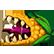 :kaze_corn: